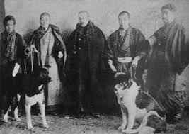 História do Akita Inu