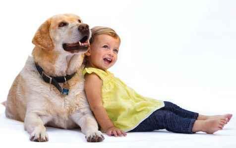 Benefícios dos cachorros 2