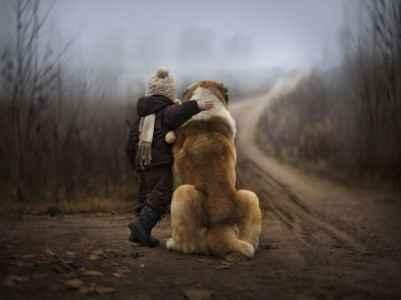Criança abraçando cachorro grande