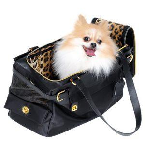 Cachorro pequeno dentro de uma bolsa