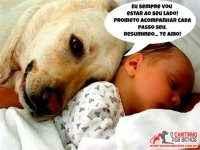 Cachorro com um bebê