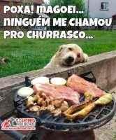 Cachorro no churrasco