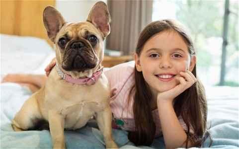 Nome de Cachorra Bulldog Francês