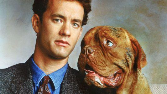 Nomes para machos de cachorros famosos