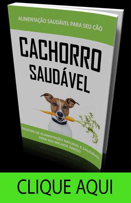 alimentação saudavel para cães